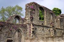 Ruins of Lochleven Castle by Danita Delimont