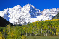 Maroon Bells with autumn aspen forest von Danita Delimont