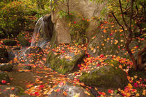 Waterfall with autumn color by Danita Delimont