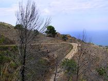 Monte Cofano von captainsilva