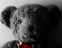 Teddy by Janne Rask