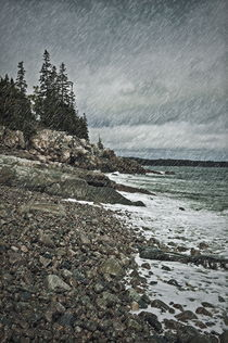 Coastal rain storm, Maine, USA by John Greim