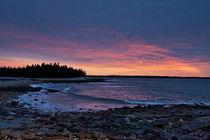 Acadia Sunrise von John Greim