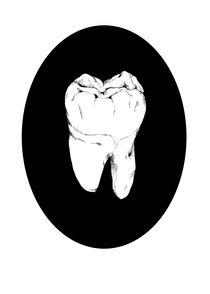 Tooth by Romain Malauzat