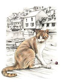 Cornish Cat von Johanna Pieterman