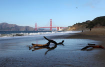 Beachview towards Golden Gate Bridge von winterimages