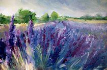 Provence von Ellen Fasthuber-Huemer