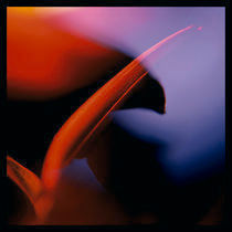 Internal Reflections XVII by Eva Kalpadaki