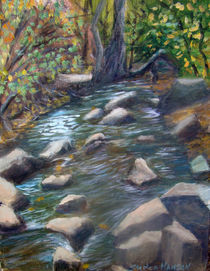 Rocky Mountain Stream by Stephen hanson