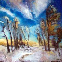 Winterstimmung von Ellen Fasthuber-Huemer