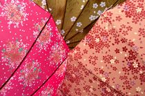 Japanese Umbrellas by Dean Harte