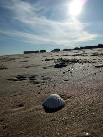 El Saler beach von Rai Alacreu