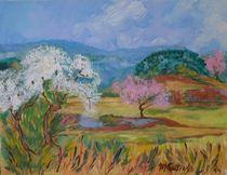 Arrivée du printemps en Languedoc von myriam courty