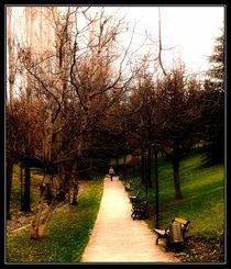 Ankara garden by Roberto Giobbi