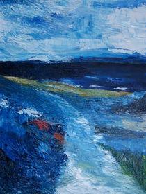 Pathway to OysterHaven von Conor Murphy