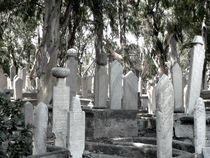 Graveyard-flakes-40