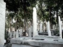 Graveyard-flakes-41