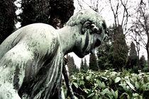 graveyard companion I von Oliver Metz