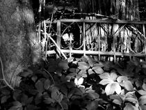 graveyard bars I by Oliver Metz