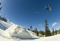 ski 3 von Stephan  Sutton