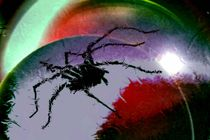 Arachnosphäre. von Bernd Vagt