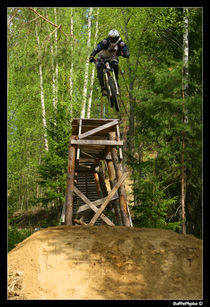 downhill biker von Stephan  Sutton