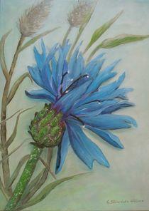 KOrnblume von G.Elisabeth Willner