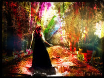 Dreams von Lorenza Dona'