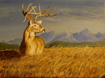 Wyoming Buck  by John  Tukey