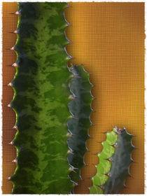 Cactus Trio von Cesar Palomino