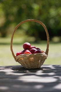 Summer-fruit-basket