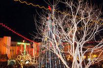 Christmas Tree at Night at Manger Square by Munir Alawi
