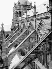 Flying Buttresses - BW by Jenny Hudson