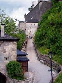 Up to the Monchsberg by Jenny Hudson