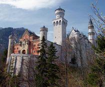 Neuschwanstein by Jenny Hudson