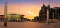 Cologne Dome by Raico Rosenberg