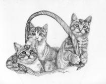 Kitten Mischief von Brandy House