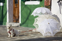 The guardian of the umbrellas von Raffaella Lunelli