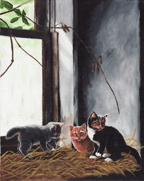 Kittens Playing von Brandy House