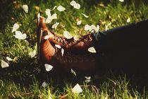 Falling Slowly by Julia Schmidt