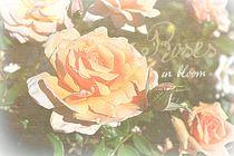 Roses in Bloom by Patricia N