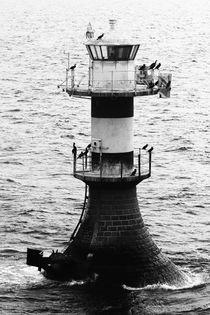 Leuchtturm Schweden von Falko Follert