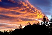 Sonnenuntergang in Neuseeland von Philipp Meier
