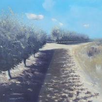 Applegrove Sataf von Robert Selkirk
