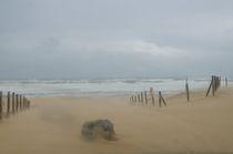 sand storm in Hossegore von Vsevolod  Vlasenko