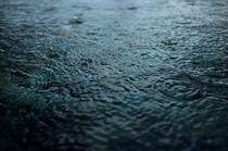 rain von Vsevolod  Vlasenko