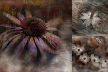 Collage Melancholie by claudiag