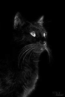 Black portrait by Raffaella Lunelli
