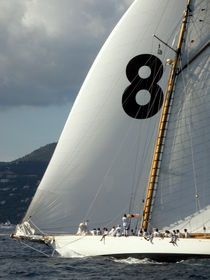 Saint-Tropez Regatta 8 von Lainie Wrightson