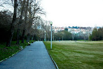 Park life by vlad